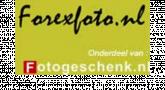 Logo Forexfoto